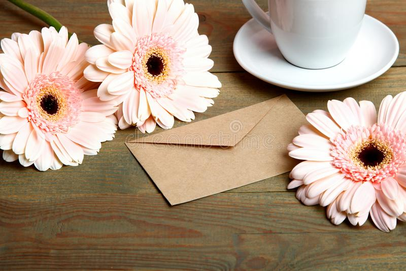 Tres flores hermosas del gerbera imagen de archivo