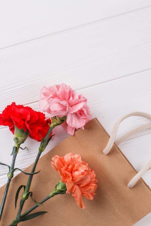 Tres flores y panieres multicolores del clavel fotografía de archivo