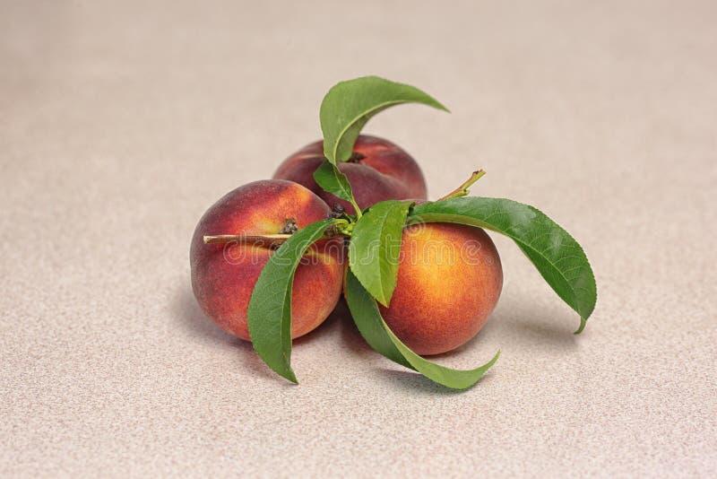 Tres frutas del melocotón fotografía de archivo libre de regalías