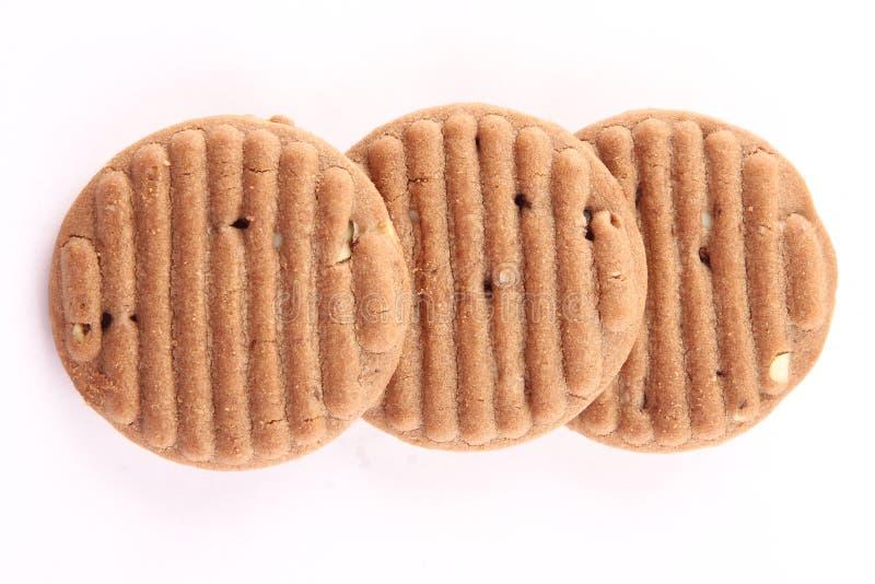 Tres galletas secas de las frutas del chocolate fotografía de archivo libre de regalías