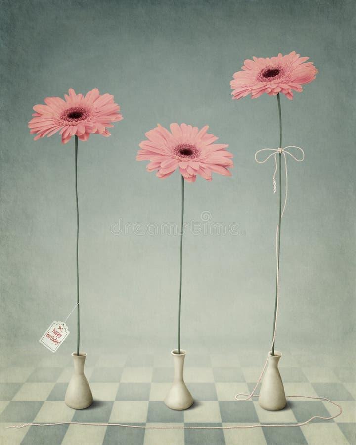 Tres Gerber en los floreros blancos. ilustración del vector