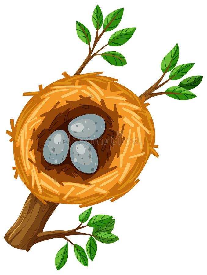 Tres huevos en la jerarquía del pájaro stock de ilustración