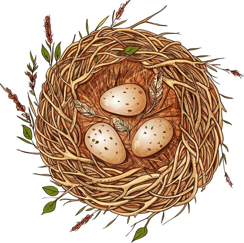 Tres huevos en una jerarquía ilustración del vector
