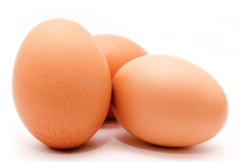 Tres huevos marrones del pollo aislados en un fondo blanco imagenes de archivo