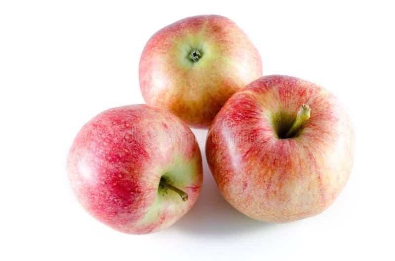 Tres manzanas maduras aisladas en el fondo blanco imagen de archivo