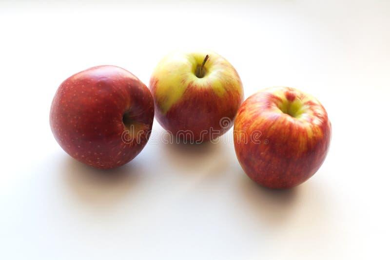 Tres manzanas maduras en el fondo blanco imagen de archivo