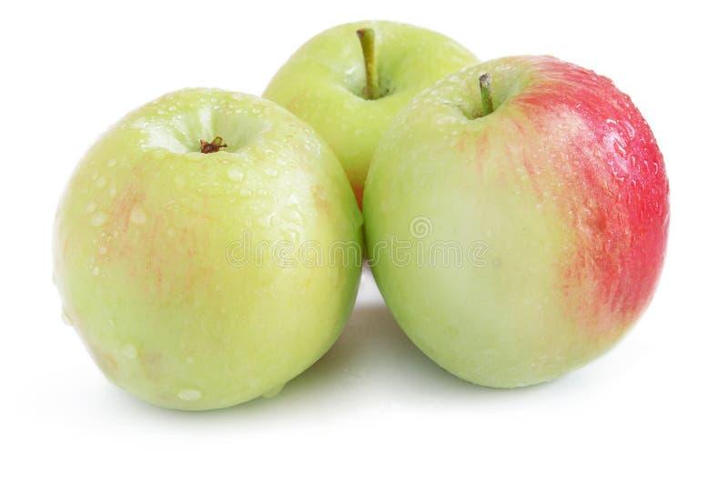 Tres manzanas verdes con agua caen en un fondo blanco con a foto de archivo libre de regalías