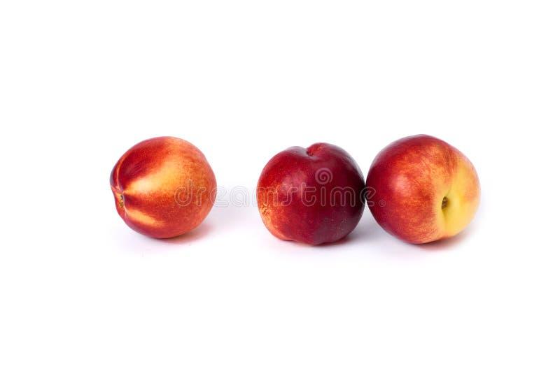 Tres melocotones calvos rojos en el fondo blanco Color rojo del primer de los melocotones fotografía de archivo