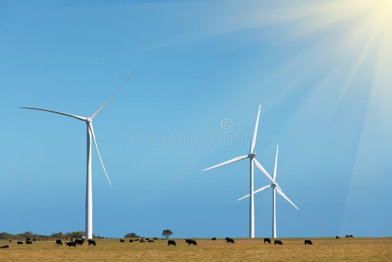 Tres molinoes de viento - producción energética de energía limpia imagen de archivo libre de regalías
