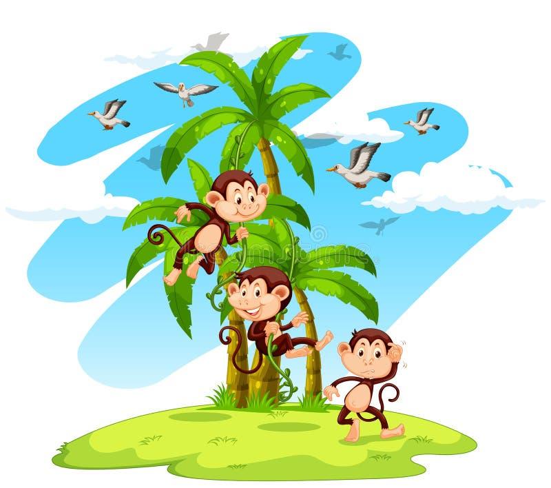 Tres monos en la isla stock de ilustración