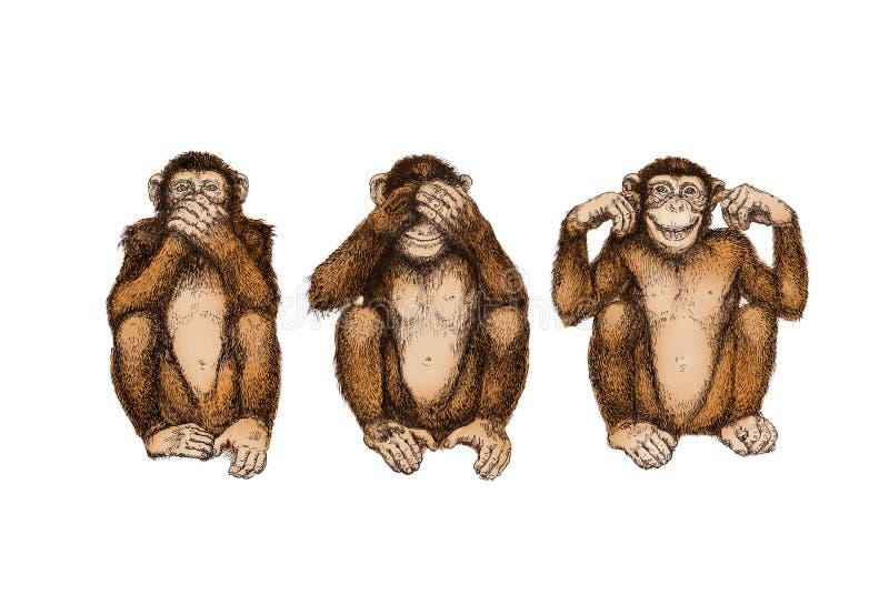 Tres monos sabios (no véase, oiga, hable ningún mal) stock de ilustración