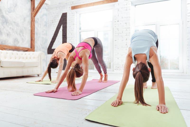 Tres muchachas atléticas que tienen un entrenamiento del grupo en gimnasio fotografía de archivo