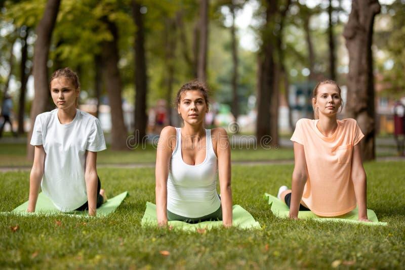 Tres muchachas delgadas jovenes que hacen estirar en las esteras de la yoga en hierba verde en el parque en un d?a caliente Yoga  imagen de archivo