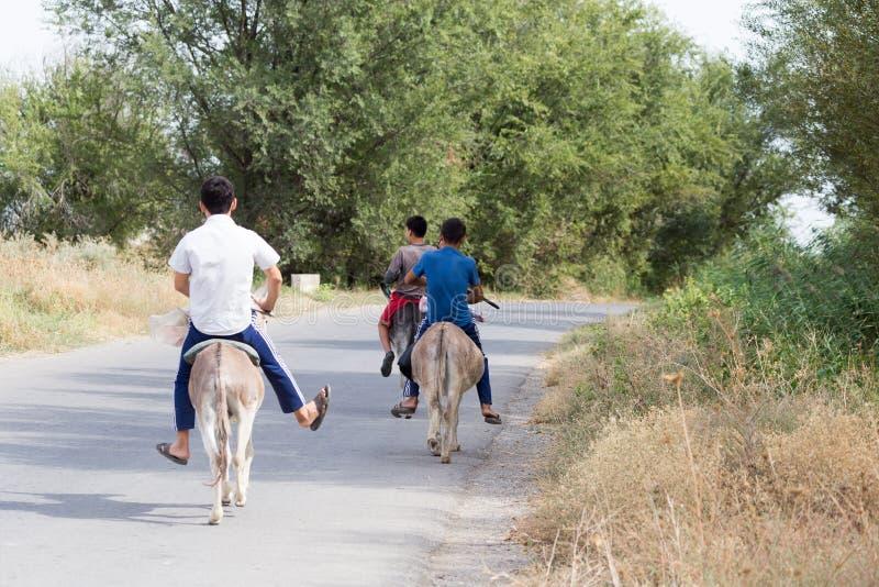 Tres muchachos en un burro montan en el camino imagen de archivo