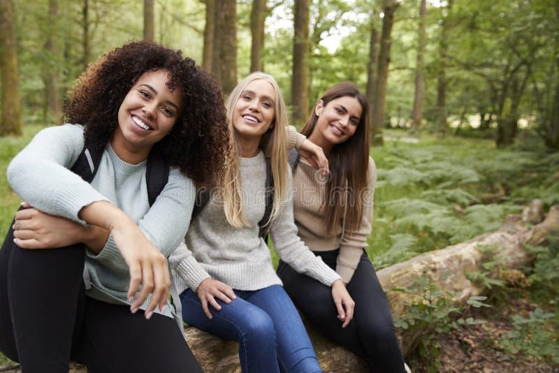 Tres mujeres adultas jovenes felices que toman una rotura que se sienta en un árbol caido en un bosque durante un alza, retrato fotos de archivo