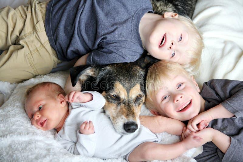 Tres niños jovenes felices que se acurrucan con el perro casero en cama foto de archivo