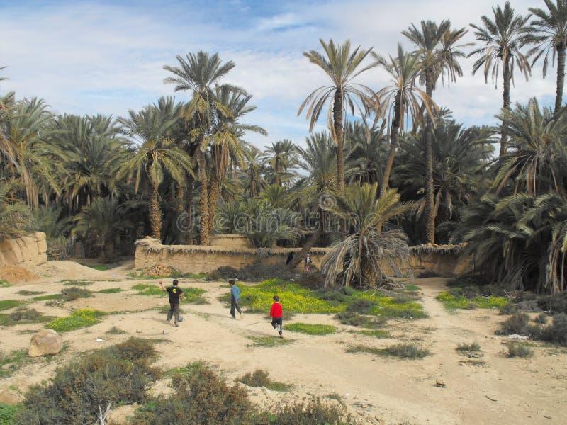 Tres niños que juegan en el oasis Marruecos de la palma foto de archivo libre de regalías
