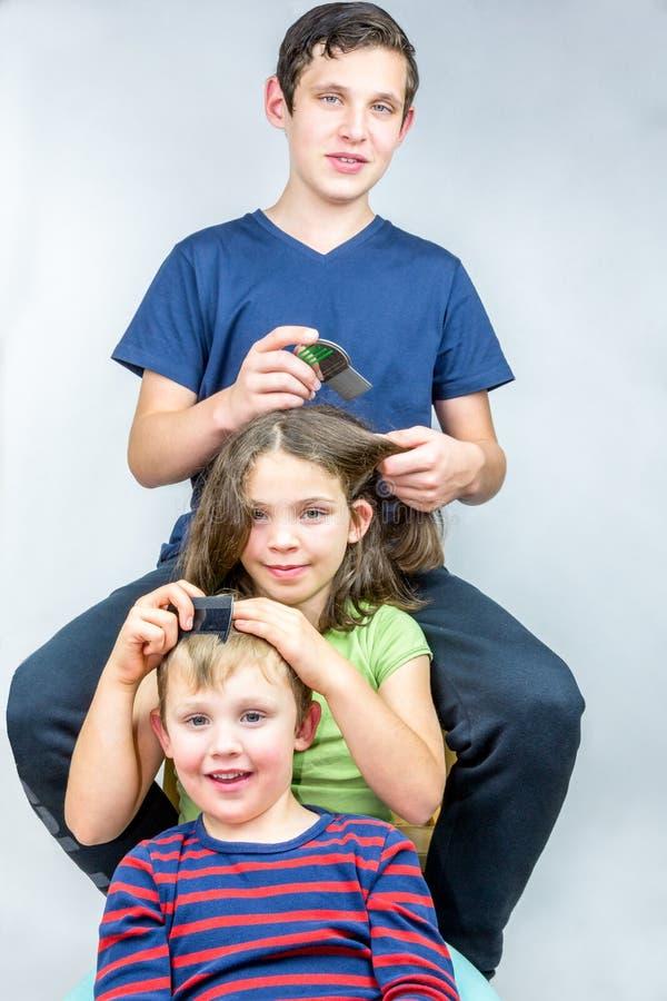 Tres niños que peinan cada otros dirigen Tratamiento eficiente de los piojos principales, tiro del retrato del estudio imagen de archivo