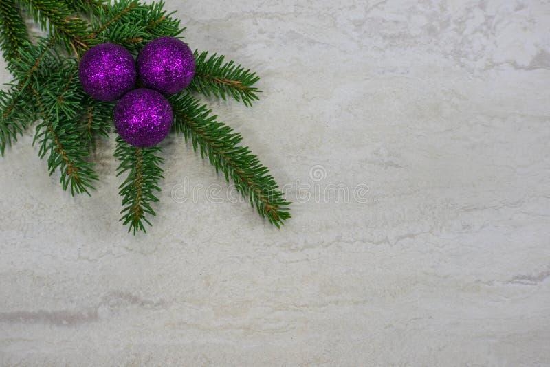 Tres ornamentos púrpuras en una rama spruce imagen de archivo