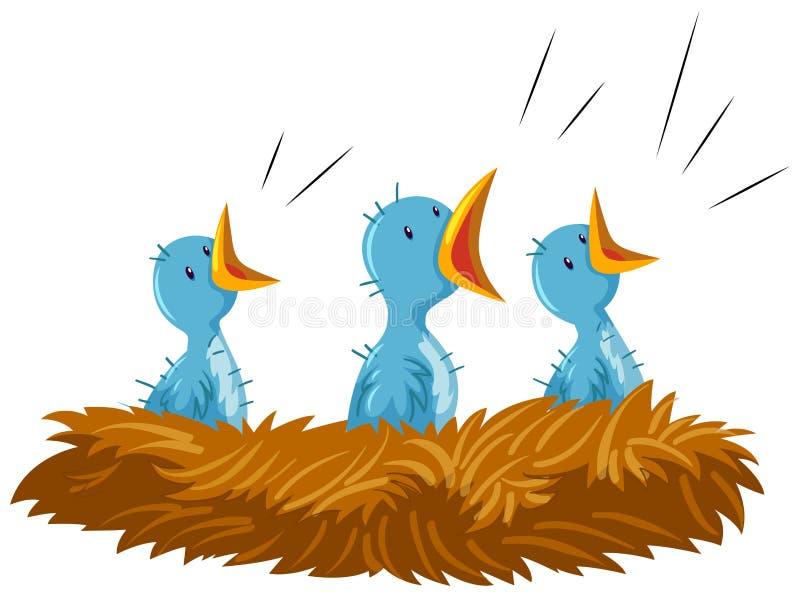 Tres pájaros de bebé en jerarquía libre illustration