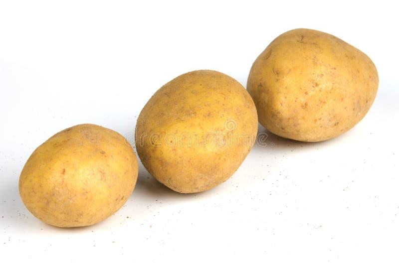 Tres patatas imagen de archivo