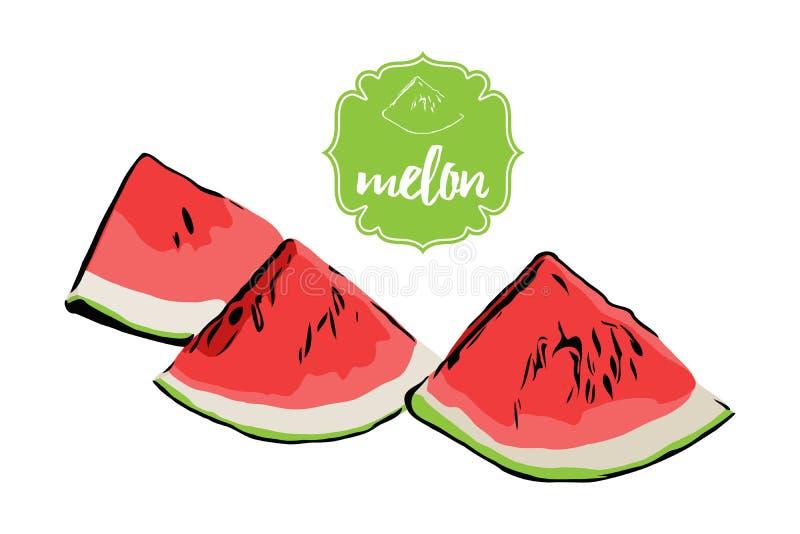 Tres pedazos exhaustos del melón de la mano de la historieta aislados en blanco Insignia retra de la etiqueta de la tienda de la  stock de ilustración
