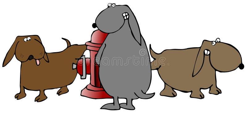 Tres perros que hacen pis en una boca de riego de fuego stock de ilustración
