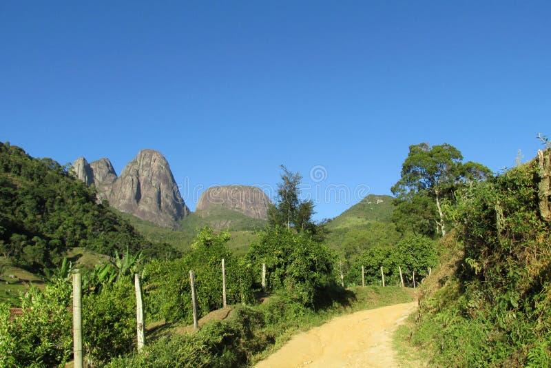 Tres Picos parkerar, den atlantiska rainforesten, Brasilien royaltyfria foton