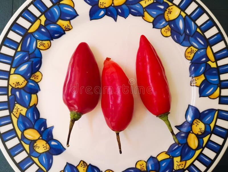 Tres pimientas rojas del jalapeno, pimienta de chiles candente Ingredientes alimentarios aislados imágenes de archivo libres de regalías