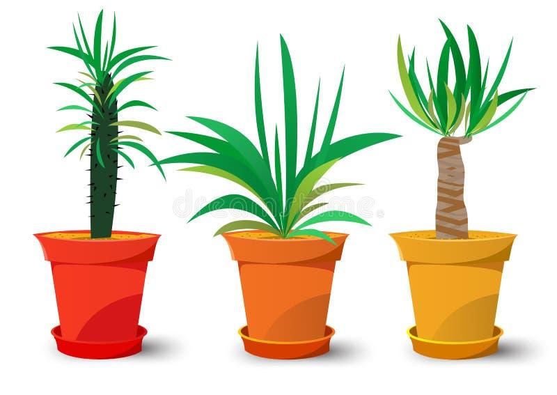 Tres potes con las plantas ilustración del vector
