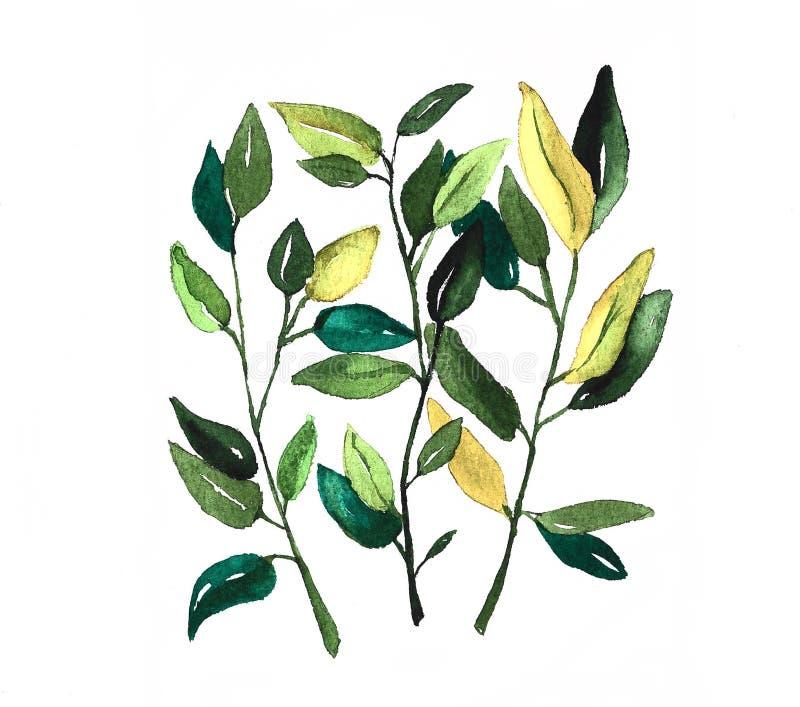 Tres ramas bastante coloridas de la primavera stock de ilustración