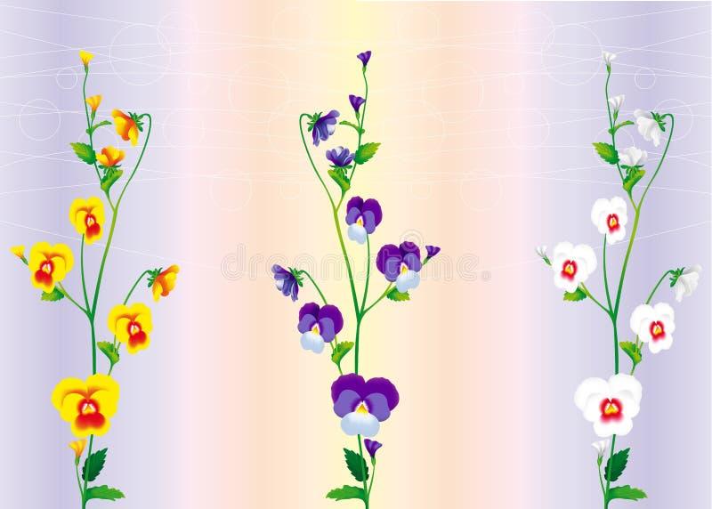Tres ramificaciones de violetas stock de ilustración