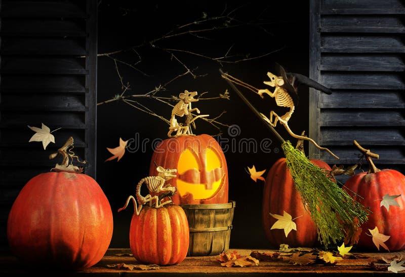 Tres ratones de Halloween con la escoba del vuelo imágenes de archivo libres de regalías