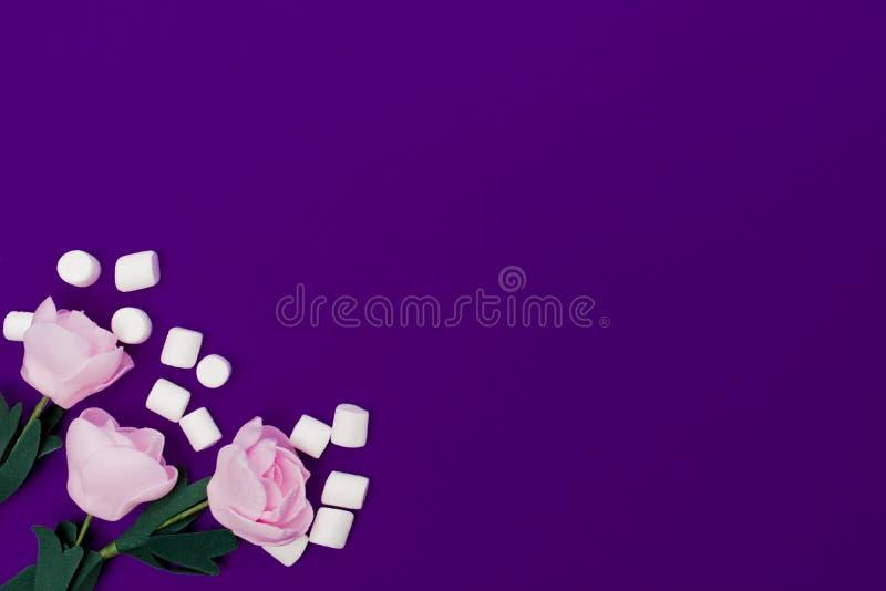 Tres rosas en colores pastel con las pequeñas melcochas dispersadas mienten en un fondo púrpura brillante Visión desde arriba foto de archivo