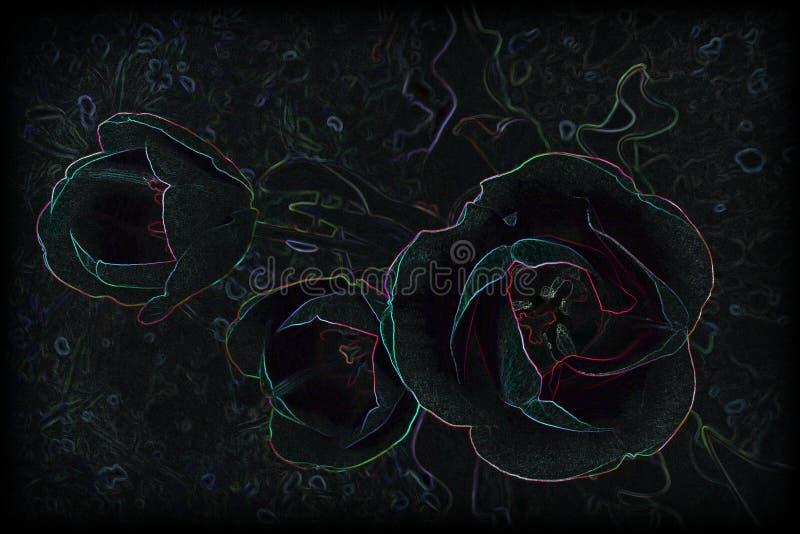 Tres tulipanes del terciopelo stock de ilustración