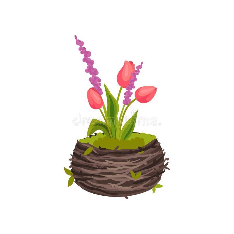 Tres tulipanes que crecen en una imagen pote-formada del vector de la jerarquía en el fondo blanco stock de ilustración