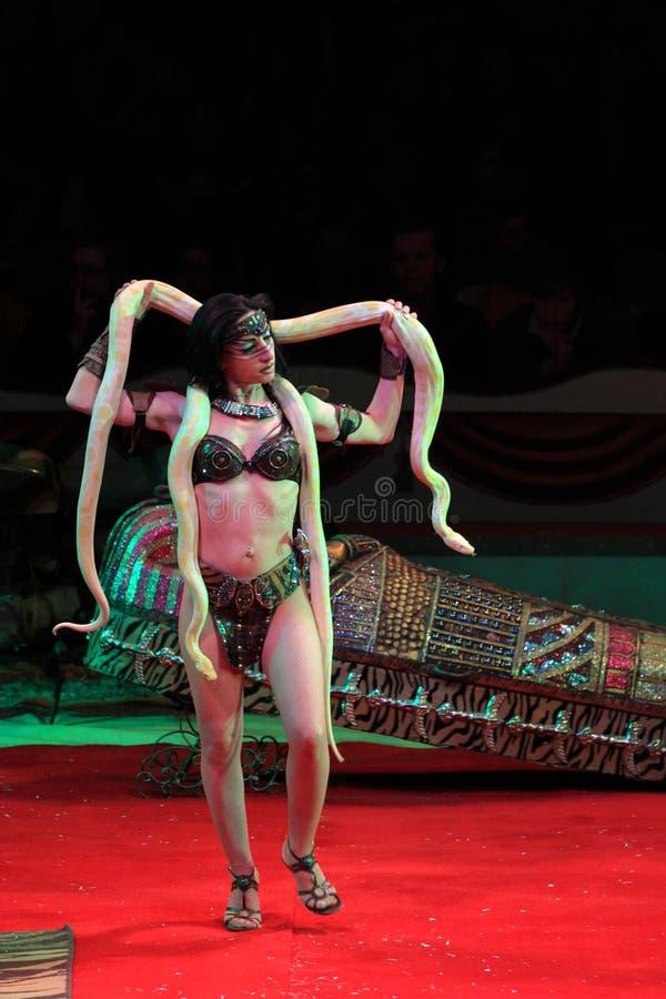 tresera wąż zdjęcie stock