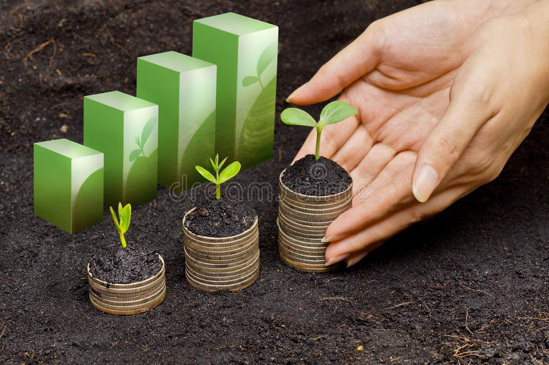Tress growing on coins stock photography