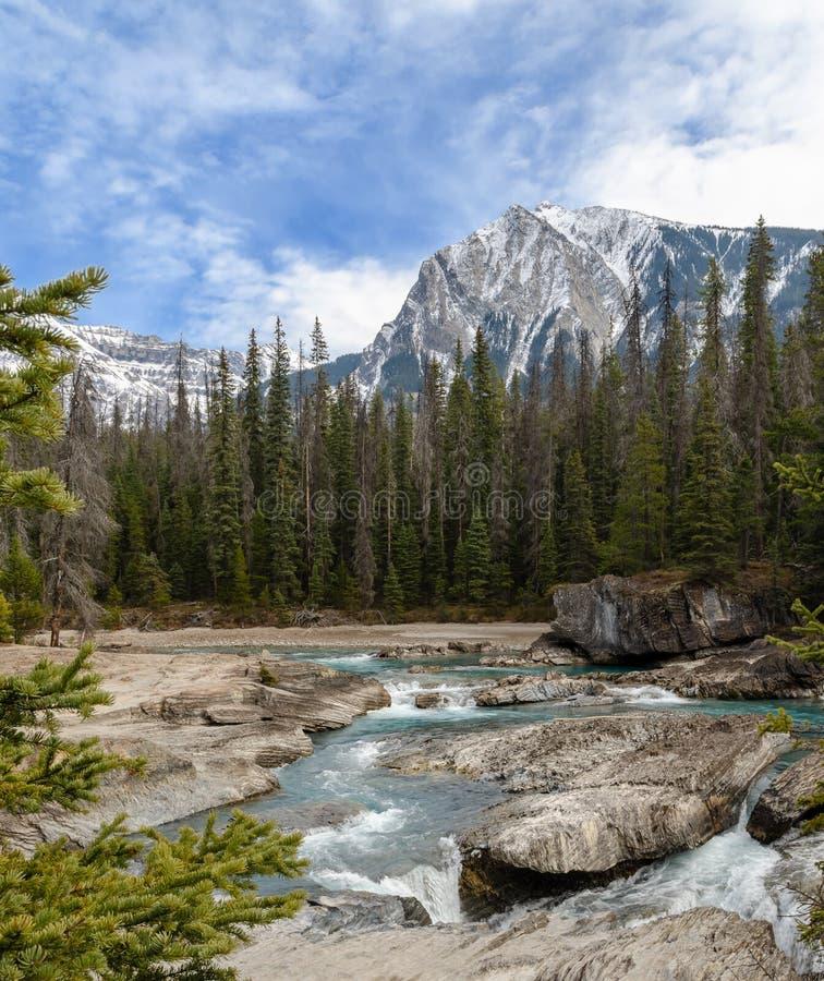 Treten von Pferdeflu? an der nat?rlichen Br?cke in Yoho National Park, Britisch-Columbia, Kanada lizenzfreie stockfotos
