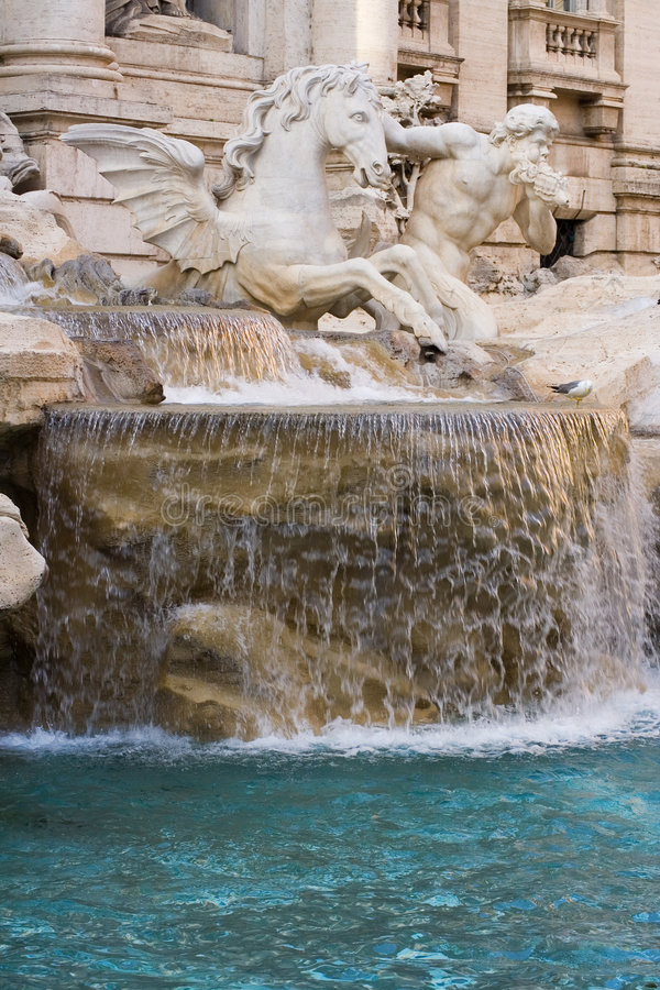 trevi фонтана крупного плана стоковая фотография rf