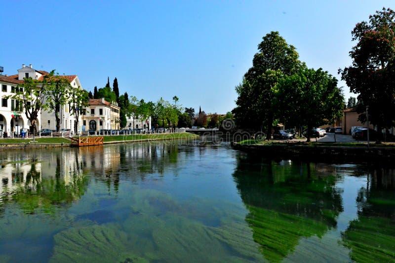 Treviso gata Italien royaltyfri fotografi