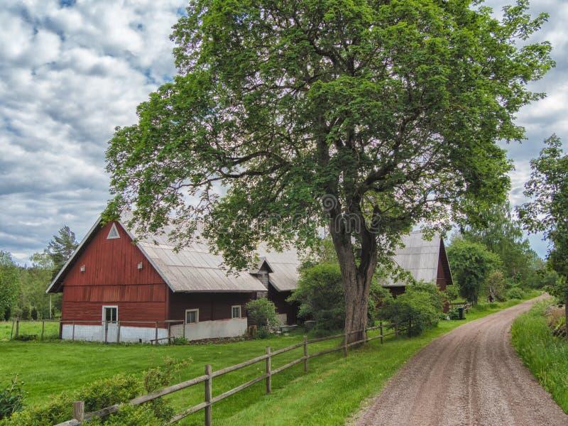 trevlig bygd med den jordbruks- vägen på rätsidan och det gamla röda trähuset royaltyfri bild