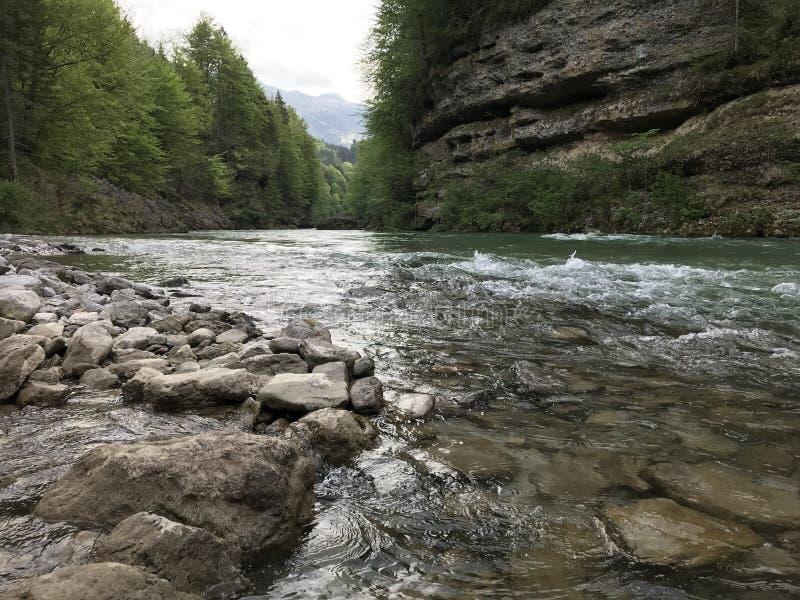 Trevlig flod mellan bergen royaltyfri fotografi