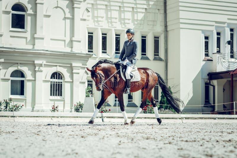 Trevlig kompetent ryttare som går framåtriktat på en häst royaltyfria bilder