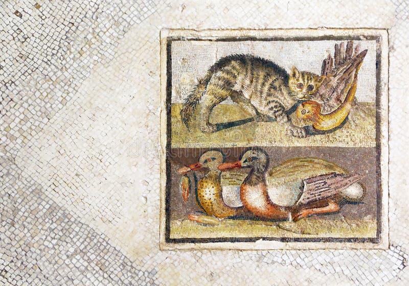 Trevlig roman mosaik med katten som jagar en and arkivfoton