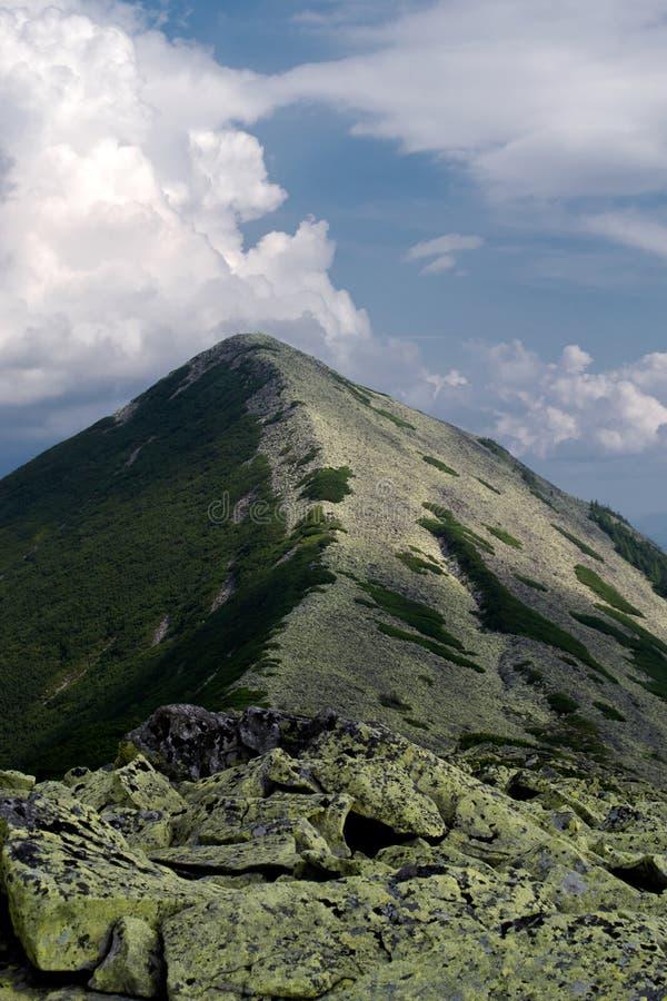 Trevlig sikt av bergen lopp Turism ukraine carpathians arkivbild