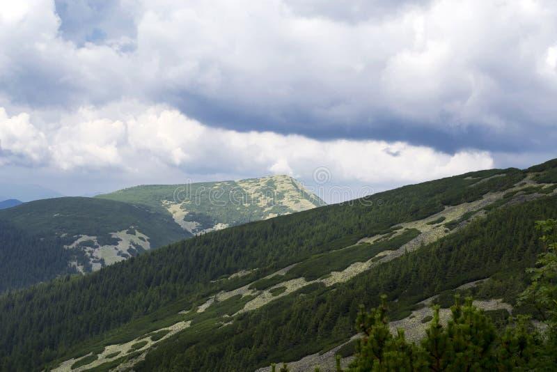 Trevlig sikt av bergen lopp Turism ukraine carpathians royaltyfri fotografi