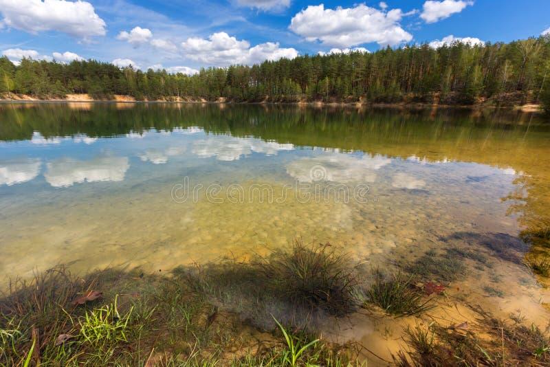 Trevlig sjö i pinjeskog royaltyfria foton
