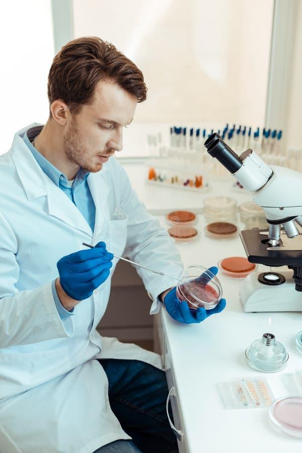 Trevlig smart man som ser den petri maträtten arkivfoto