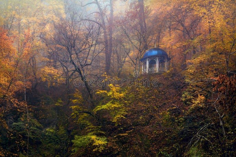 Trevlig tid för höstskog för tanke Goryachiy klyuch fotografering för bildbyråer